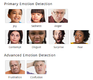 Emotient analyzes 28 facial expressions to determine the subject's emotional range.