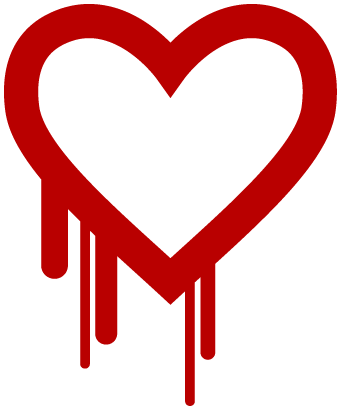 Heartbleed's Intranet & VPN Connection