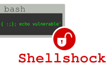 Shellshocked: A Future Of 'Hair On Fire' Bugs