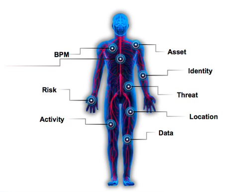 exploring the human immune system essay Do your best to keep up with the problem solution essay format:  human trafficking  lowered immune system/super germs.