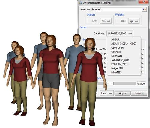 Jack 7.1 comes with additional anthropometric databases, including those representing Japan and Korea.