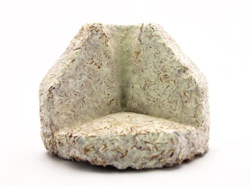 This molded corner block, made of mushroom roots grown on an oat hull blend, is engineered to package and protect heavy items, replacing petrochemical-based materials such as Stryrofoam.  (Source: Ecovative)