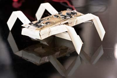 An insect-like robot designed and 3D printed with common materials such as paper could be used for exploring areas inaccessible to, or too dangerous for, humans. &#8232;  (Source: Jason Dorfman, CSAIL/MIT)