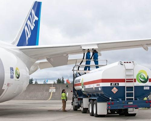 ANA's 787 Dreamliner made a transpacific flight fueled with a combination of biofuel and jet fuel.   (Source: Boeing)