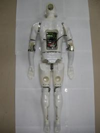 The half-scale swumanoid swimming robot incorporates 20 waterproof motors that are controlled by a computer to mimic the actions of human swimmers.   (Source: Tokyo Institute of Technology)