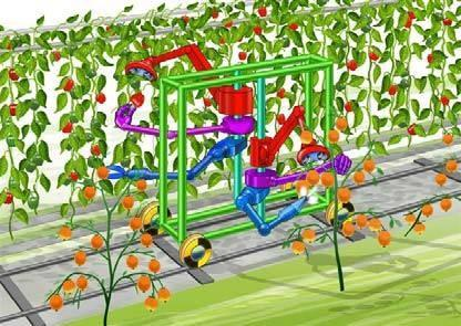 An artist's rendition of how the intelligent robotics platform developed by the Clever Robots for Crops, or CROPS, project will function. The project, a collaboration between universities from a number of countries under the larger FP7 EU program, aims to design a robot that can identify and pick ripe crops, as well as target the correct plants for spraying with liquids.   (Source: CROPS)