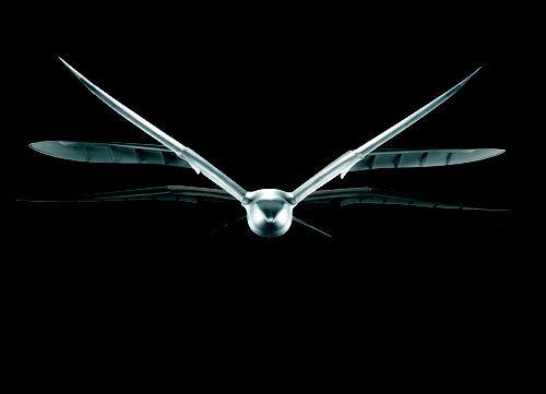 Festo's SmartBird was inspired by a herring gull. It flies, glides, and sails, and can take off, fly, and land autonomously, rising by means of its flapping wings alone. Its articulated torsional drive unit, combined with a complex flight control system in its torso and tail section, lets SmartBird's wings twist at specific angles, as well as beat up and down to optimize airflow use without the use of additional lift devices. Wing position and torsion are monitored by ZigBee-based two-way radio communication, conveying operating data such as battery charge and power consumption, as well as pilot input. Pilots can also adjust torsion control parameters in real time during flight. Festo expects to transfer ideas and insights gained from the functional integration of coupled drive units to the development and optimization of hybrid drive technology.   (Source: Festo)