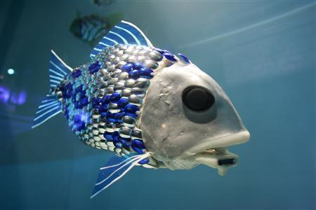 Robotic fish that swim in schools and cooperate using artificial intelligence to detect and identify pollution in seawater have been created by SHOAL, an EU-funded group of researchers led by BMT Group. The goal is to cut the time required to detect pollution in ports and other aquatic areas from weeks to seconds, using the robotic fishes' chemical sensors for onsite analysis. The robots can avoid obstacles, determine where to look for pollution using mapping, locate its source, maintain a maximum communication distance from the rest of the school, send data underwater back to a base station, and return to it for recharging.   (Source: BMT Group)