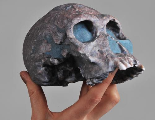 A 3D-printed skull showing a stunning example of multicolor 3D resin printing. Quality at this scale will be available to anyone at their local Staples office supply store starting this year.   (Source: Mcor Technologies) 