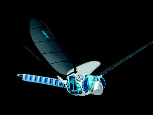 Modeled after a dragonfly, Festo's latest sophisticated robot is the BionicOpter, which can independently move each of its wings to fly in any direction, as well as hover and glide.