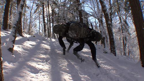 Google's expected target applications for its new robot division are in manufacturing and retailing, and its other robot purchases are right in line. So why did it buy Boston Dynamics, makers of innovative Big Dog, shown here, and the leading-edge military robot company?   (Source: Boston Dynamics)
