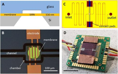 The new microengine.   (Source: Nature)