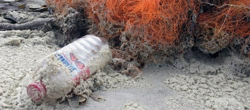 Although manufacturers and processors have worked for years to prevent or clean up plastic marine litter, the damage caused to the world's oceans, especially their wildlife, continues. Marine plastic also damages coral reefs, becomes a source of chemical contamination, and fouls fishing operations, as shown by this plastic bottle and fishing nets. They are at Westerhever on the German Wadden Sea, part of the shallow coast of the North Sea. GRID-Arendal coordinates environmental information and reports in collaboration with the United Nations Environment Programme.   (Source: Peter Prokosch, GRID-Arendal)