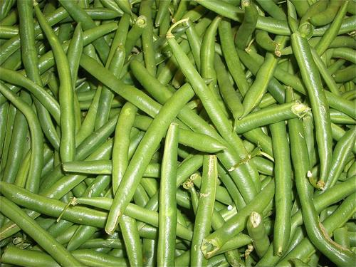 Instead of throwing away byproducts from the processing of legumes, like these green beans, why not turn them into something useful? That's the main aim of the European LEGUVAL project. Four European research centers have been working with business associations and private enterprises to find more sustainable and renewable sources for making plastics. Legumes are potential sources of fiber, biomass, biofuels, and chemical products, as well as their existing uses as food. The LEGUVAL project aims to develop plastic materials based on legume waste for agriculture, packaging, and automotive applications by extracting their proteins and fiber. So far, researchers have developed coatings using pea proteins with novel barrier properties and composites with legume fibers. Next up will be testing in real-world agricultural and packaging applications on an industrial scale. 