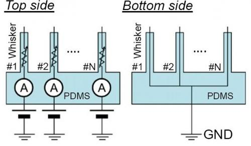 Circuit diagrams of the e-whiskers for resistivity sensing under strain.