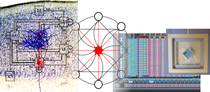 The Institute of Neuroinformatics at the Eidgenossische Technische Hochschule is developing computational models for hybrid analog/digital semiconductors that implement neuromorphic cognitive systems. (Source: ETH)