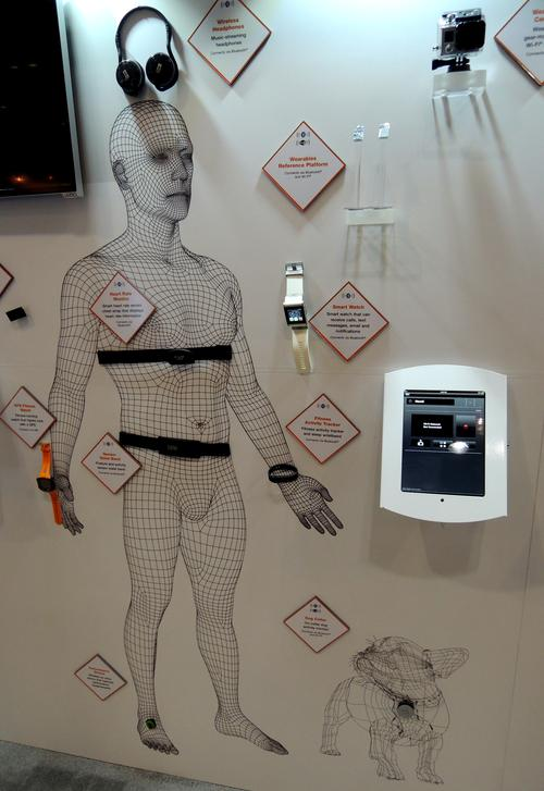 Freescale's booth focused on IoT showing a taxonomy of wearables where it has design wins, some too small for its new reference design, which it will showcase at CES in January.