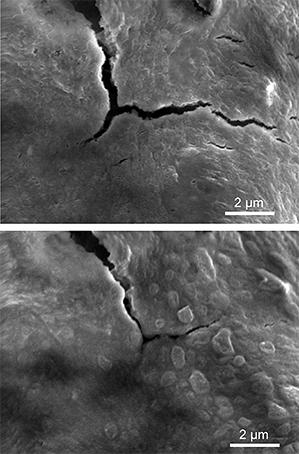 Cracks formed in a self-healing silicon electrode due to swelling during charging (top) begin to seal back up within hours (bottom). (Source: C. Wang et al, Nature Chemistry)