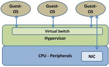 A virtual network implemented using Type 1 virtualization.