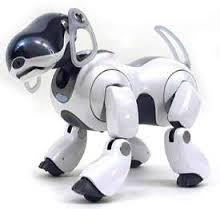 Aibo robotic dog.