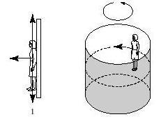 The rotor ride spins and people inside the cylinder stick to the wall, irrespective of their mass. Riders are subject to three forces: weight, normal force, and frictional force.