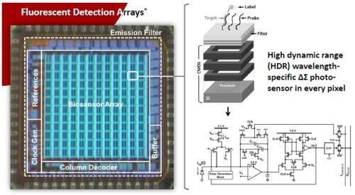 Photo-sensors at each array point provide real time detection of chemical bonding.