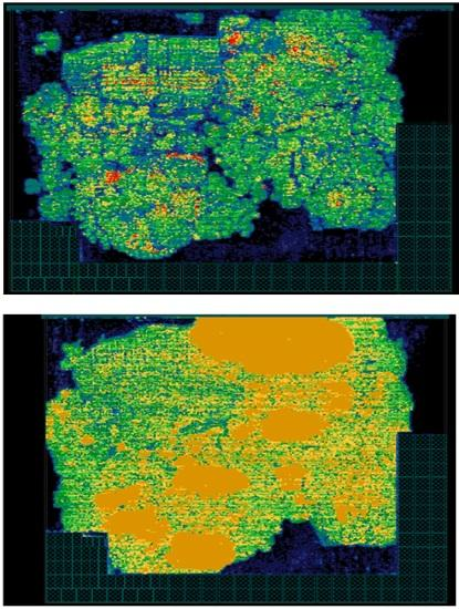 Synthesized cell density in the floorplan stage (top) as compared to the placement stage (bottom) (Source: CEVA)