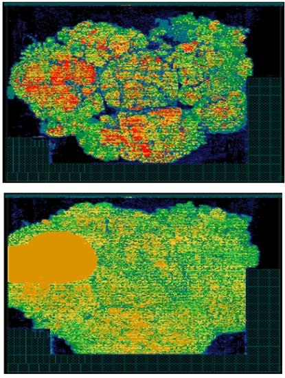 Synthesized cell density in floorplan stage (top) as compared to the placement stage after applying coefficients (bottom) (Source: CEVA)