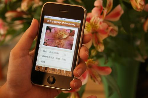 Flora identifies the flower in Chinese and English by using the core of National Taiwan University's mobile visual search engine which can be used to search by face, photo or any visual criteria. 