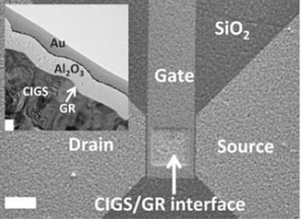A scanning electron micrograph of the device as seen from above, with the white scale bar measuring 10 microns, and a transmission electron micrograph inset of the CIGS/graphene interface where the white scale bar measures 100 nanometers. (Source: Brookhaven National Laboratory.)
