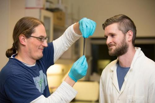 Playing in their lab, student Conor Boland and supervisor Prof. Jonathan Coleman doing research in AMBER at Trinity College Dublin made a chance discovery by mixing viscoelastic compounds with graphene. Credit: AMBER, Trinity College Dublin.