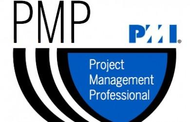 PMI's Project Management Professional