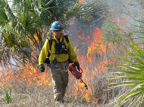 The US Fish and Wildlife Service uses social media to warn visitors to Merritt Island National Wildlife Refuge about controlled burns.   (Source: Michael Good, USFWS)