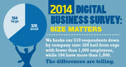 2014 Digital Business Survey: Size Matters