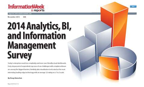 2014 Analytics, BI, and Information Management Survey