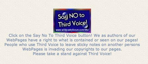 Third Voice ran into a backlash -- and eventually shut down -- after websites protested its annotation software via a 'Say No to TV' campaign that went viral