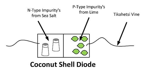 Figure 3: Coconut Shell Diode