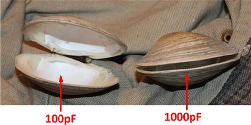 Figure 4: Capacitance vs. Clam Opening