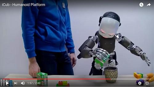 The iCub Robot while it is learning from a human teacher to plant some roots in terrain. See the video here.