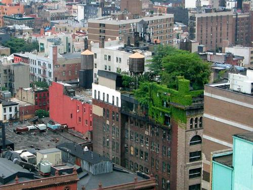 (One building going green in Lower Manhattan. Source: Alyson Hurt)