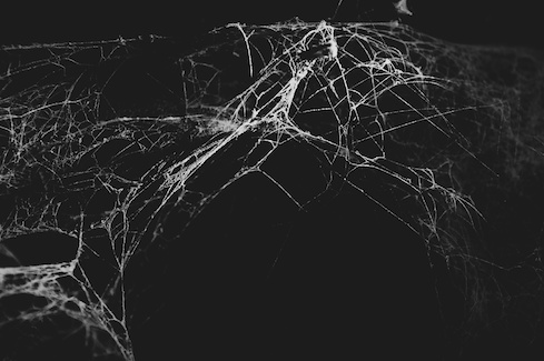 Demystifying the Dark Web: What You Need to Know
