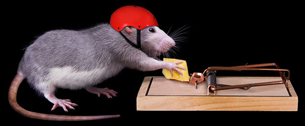 I Smell a RAT! New Cybersecurity Threats for the Crypto Industry