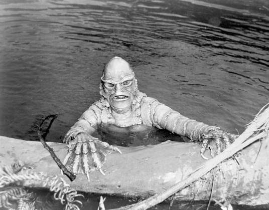 Photo Credit: 'Creature from the Black Lagoon', Public Domain, from the Florida Memory Project hosted at the State Archive of Florida.