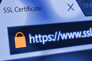 Ask for SSL Certificates  Many SMBs believe that once they install SSL certificates, they are fully secure. But SSL certificates are only the beginning of the security journey. SSL certificates encrypt the data in transport from a site visitor to your site, SiteLock's Becenti explains. So, for example, on a blog site the SSL certificate will encrypt comments that a reader makes, but it won't encrypt the data once it arrives at the site. Same for a registration form. The SSL certificate will encrypt the data the site visitor enters to fill out a form, but the data itself does not get encrypted. And, yes, SSL certificates are important because Google and the other search engines will downgrade a site if it doesn't have the secure 'lock' in the lefthand corner of the URL address command line.   SMBs also should consider having a third-party provider encrypt the data before it enters the merchant's environment, advises Ruston Miles, founder and chief strategy officer at Bluefin Payment Systems. If the data gets encrypted from the start, SSL will encrypt the transport and the data will be fully encrypted and secure once it enters the site. SMBs looking to do e-commerce or handle sensitive medical data need to consider this extra layer, Miles says.  Image Source: Adobe Stock -- mbruxelle