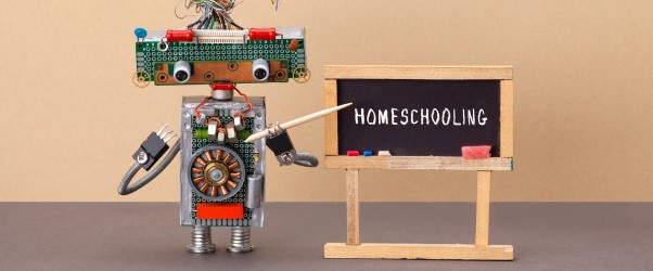 Cybersecurity Home-School: The Robot Project