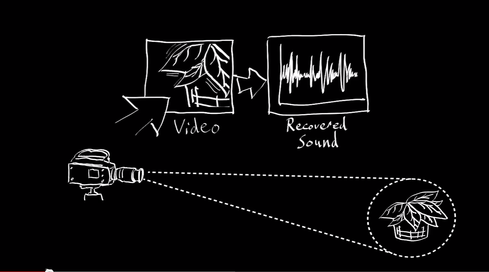 Tiny telltale signs  The effect of sound vibrations is subtle. Plant leaves exposed to a recording of 'Mary Had a Little Lamb' were moved by less than one-hundredth of a pixel. That's why you need a good video camera to turn objects into microphones.