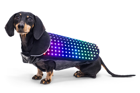 In the Internet of Things, no one knows if you are a dog.