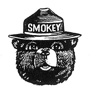 (Image: Smokeybear.com)