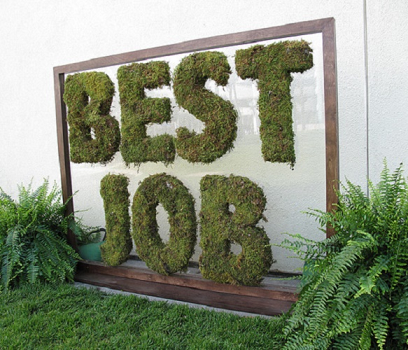 10 Best Tech Jobs For 2016