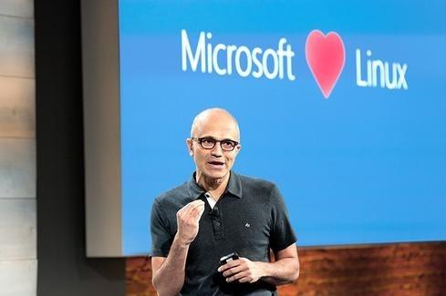 (Изображение: Microsoft)
